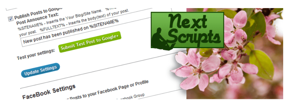 NextScript Plugin