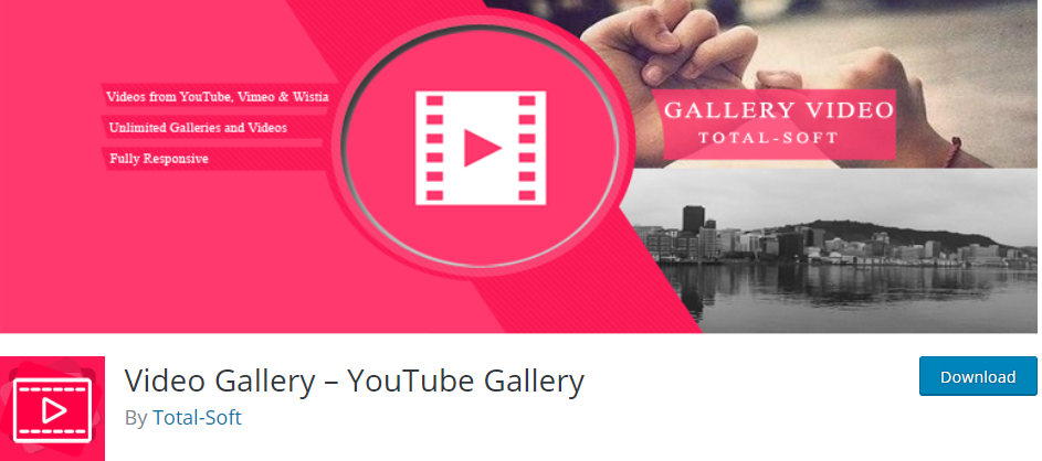 Video Gallery YouTube Gallery WordPress Youtube plugin