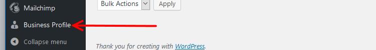 Business Profile plugin menu