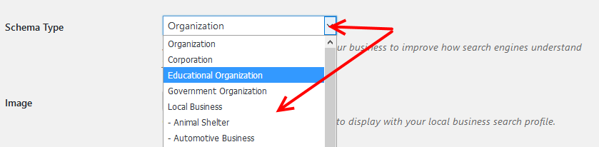 Business Profile plugin schema