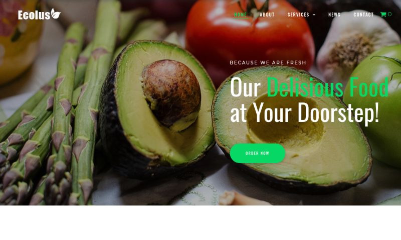 Ecolus wordpress food theme