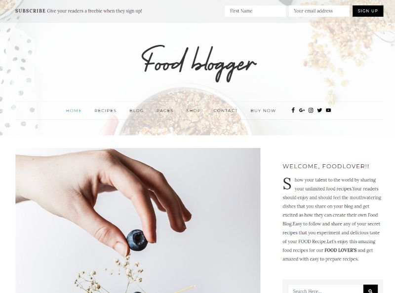 Food Blogger wordpress food theme
