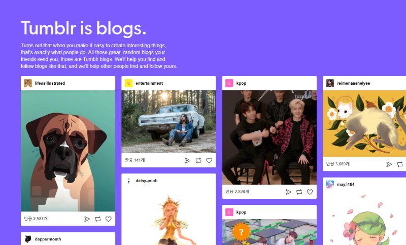 Tumblr Free Blogging Platform