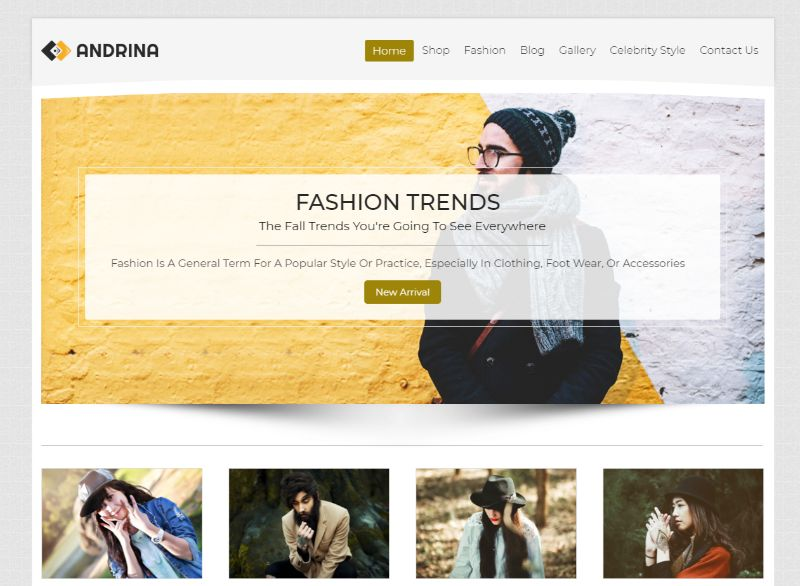 Andrina WordPress Fashion Theme
