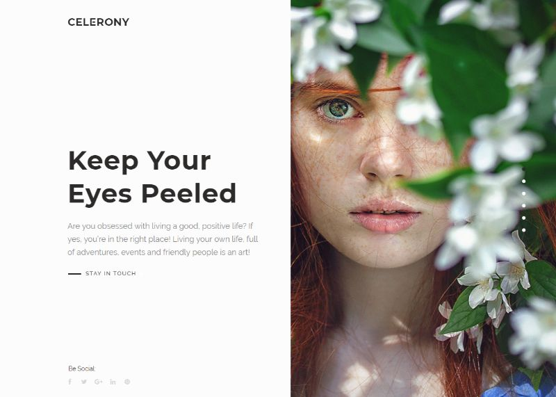 celerony-creative-wordpress-theme