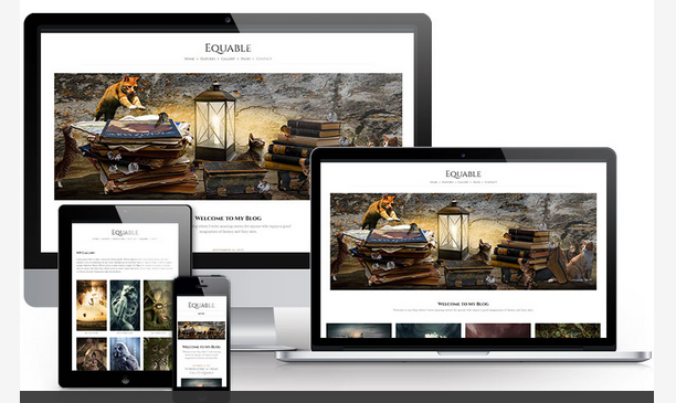 Equable WordPress magazine theme