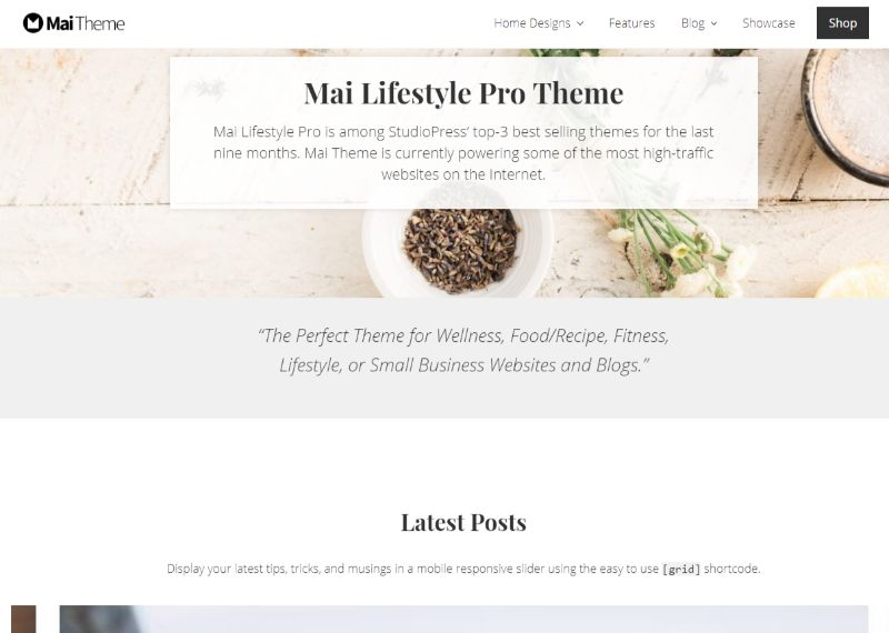 Mai Lifestyle WordPress Fashion Theme