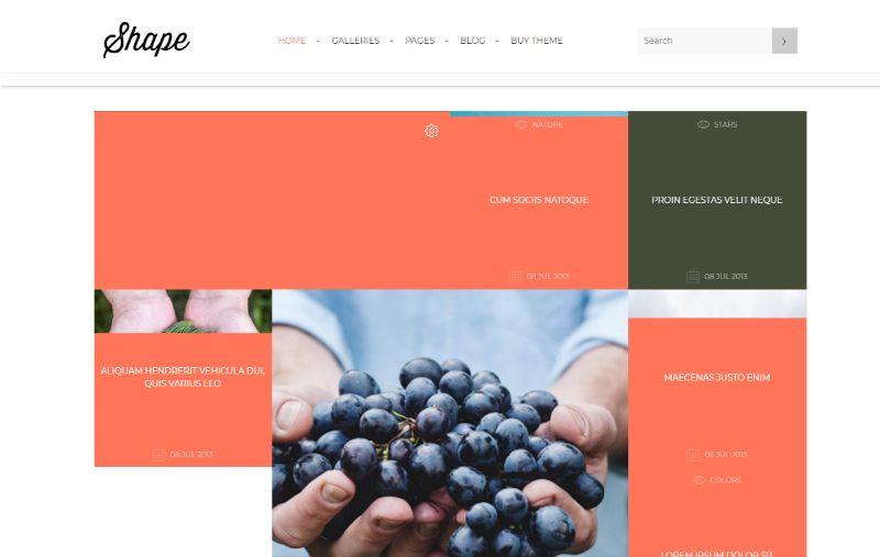 Shape portfolio WordPress theme