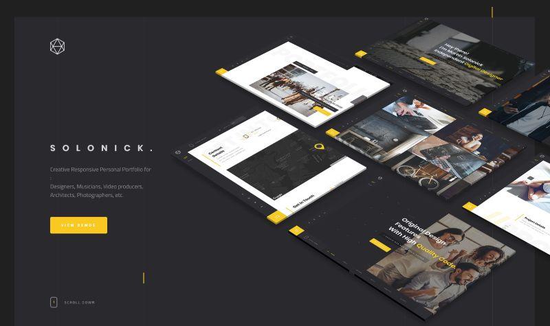 Solonick portfolio WordPress theme