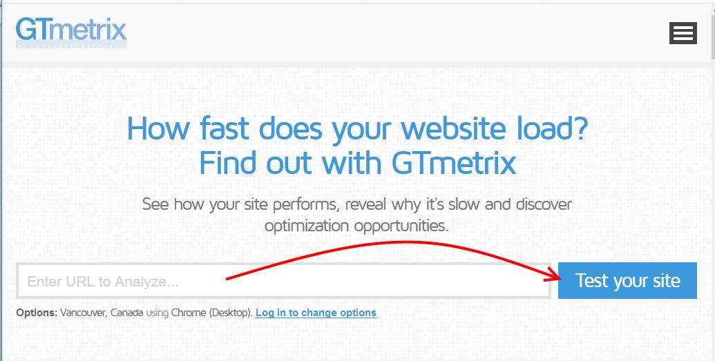 Enter website url in Gtmatrix