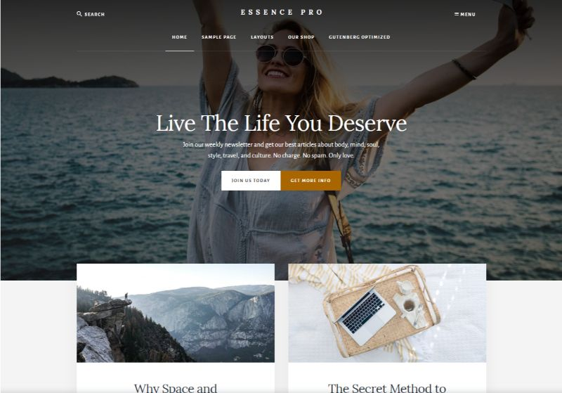 Essence Pro Lifestyle WordPress Theme