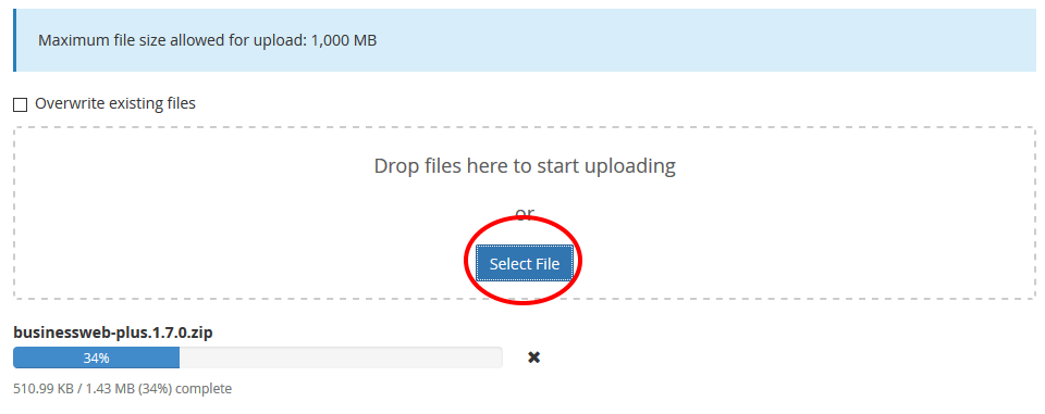 Select and upload theme via filemanager