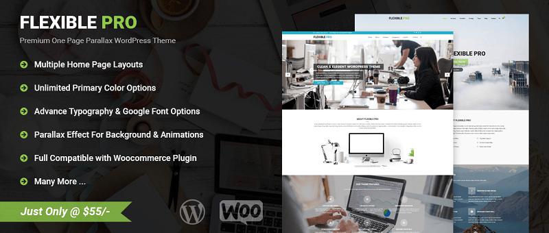 Flexible Pro Multipurpose WordPress Theme