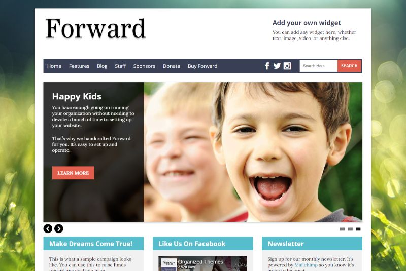 Forward WordPress Charity Themes
