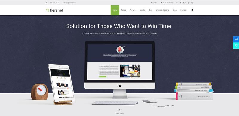 Hershel Multipurpose WordPress Theme
