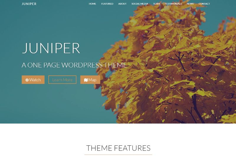 Juniper One Page WordPress Themes