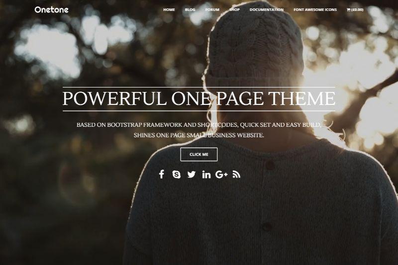 Onetone Pro One Page WordPress Themes