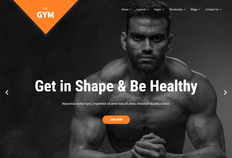SKT Gym Pro Fitness WordPress Theme