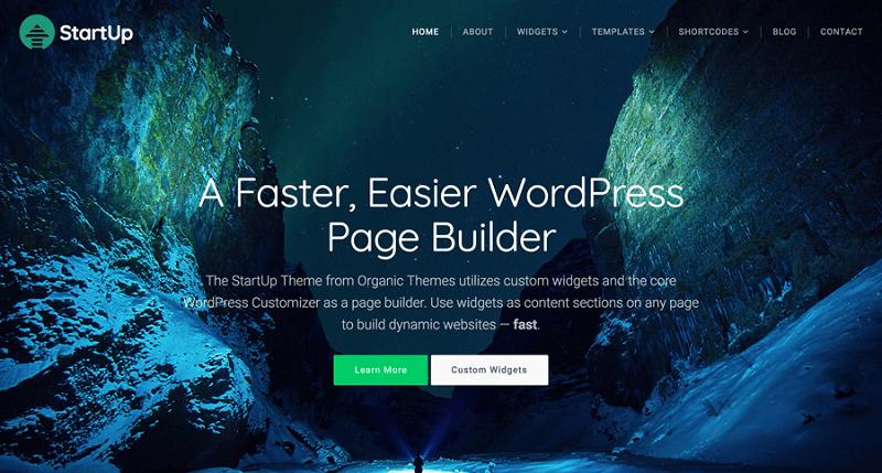 Startup Multipurpose WordPress Theme