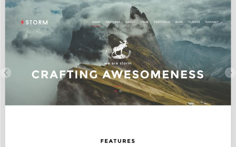 Storm One Page WordPress Themes