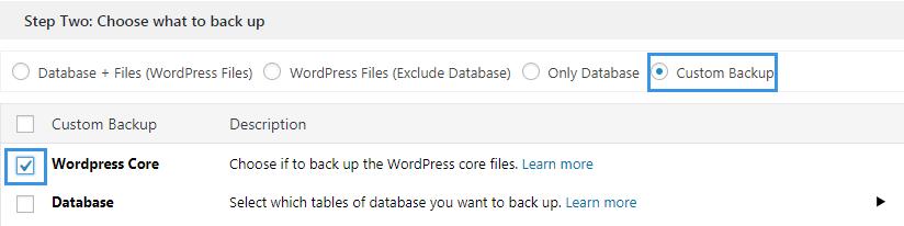 WordPress core backup