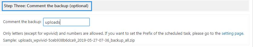 WPvivid backup pro comment the backup