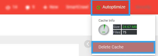 Autoptimize clear cache