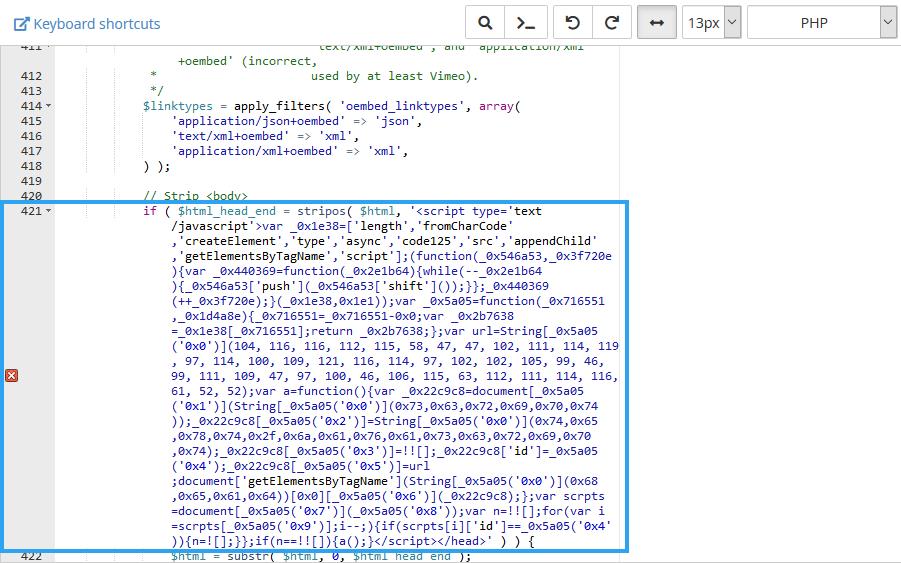Edit broken code via cPanel