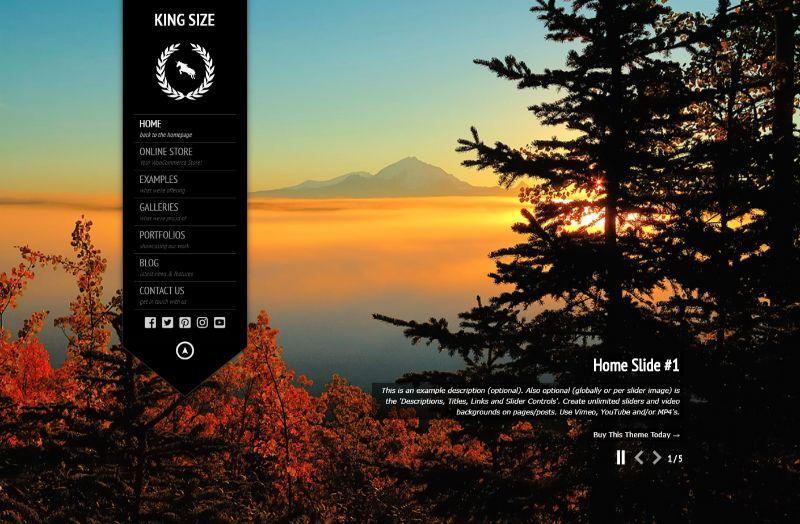 KingSize One Column WordPress Theme