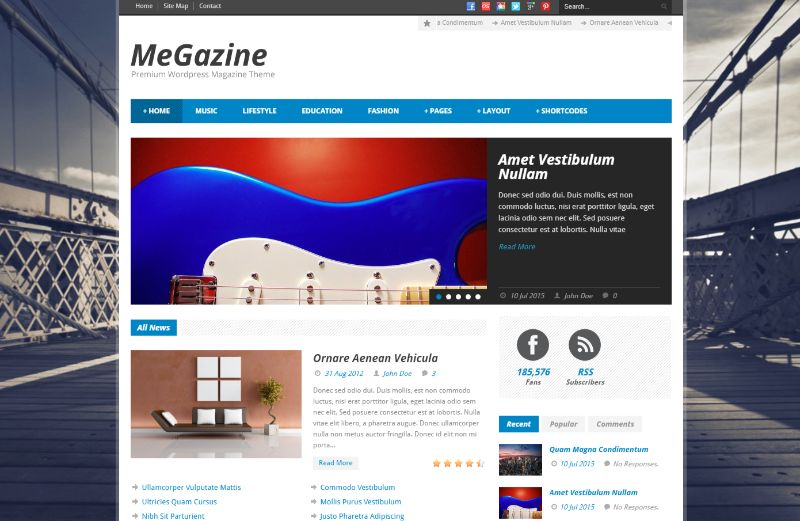 Megazine Right Sidebar WordPress Theme