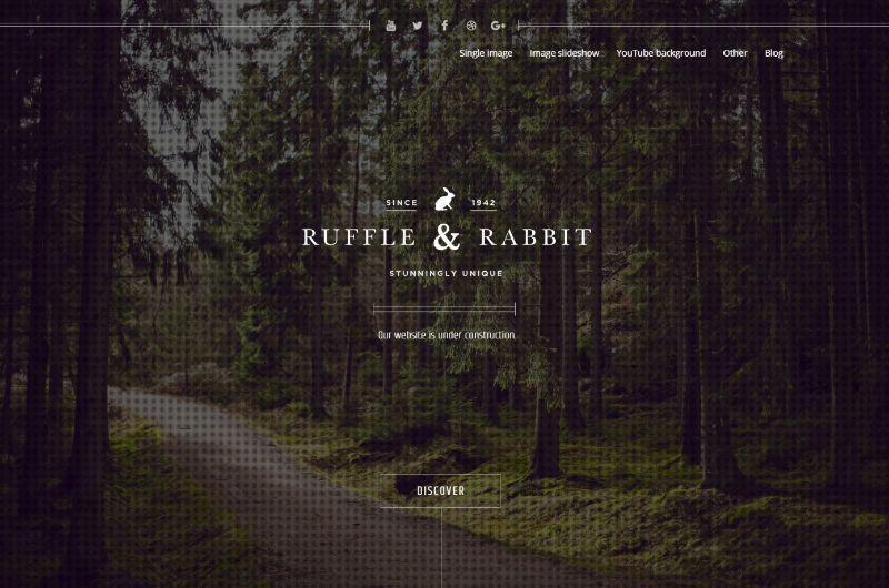 Rabbit Coming Soon WordPress Theme