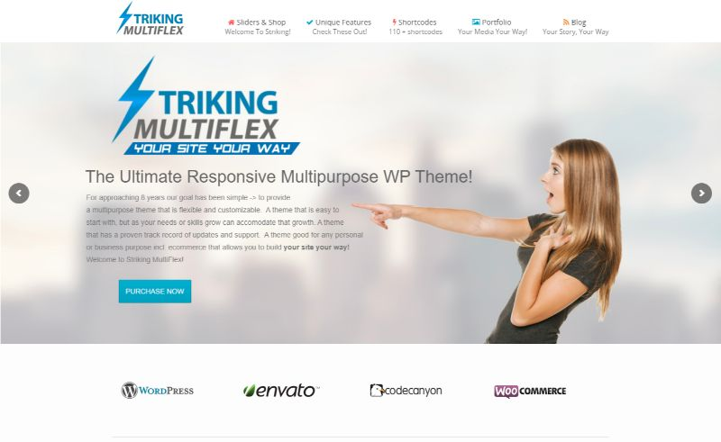 Striking Multiflex Two Columns WordPress Theme