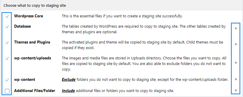 Choose what to copy to staging site